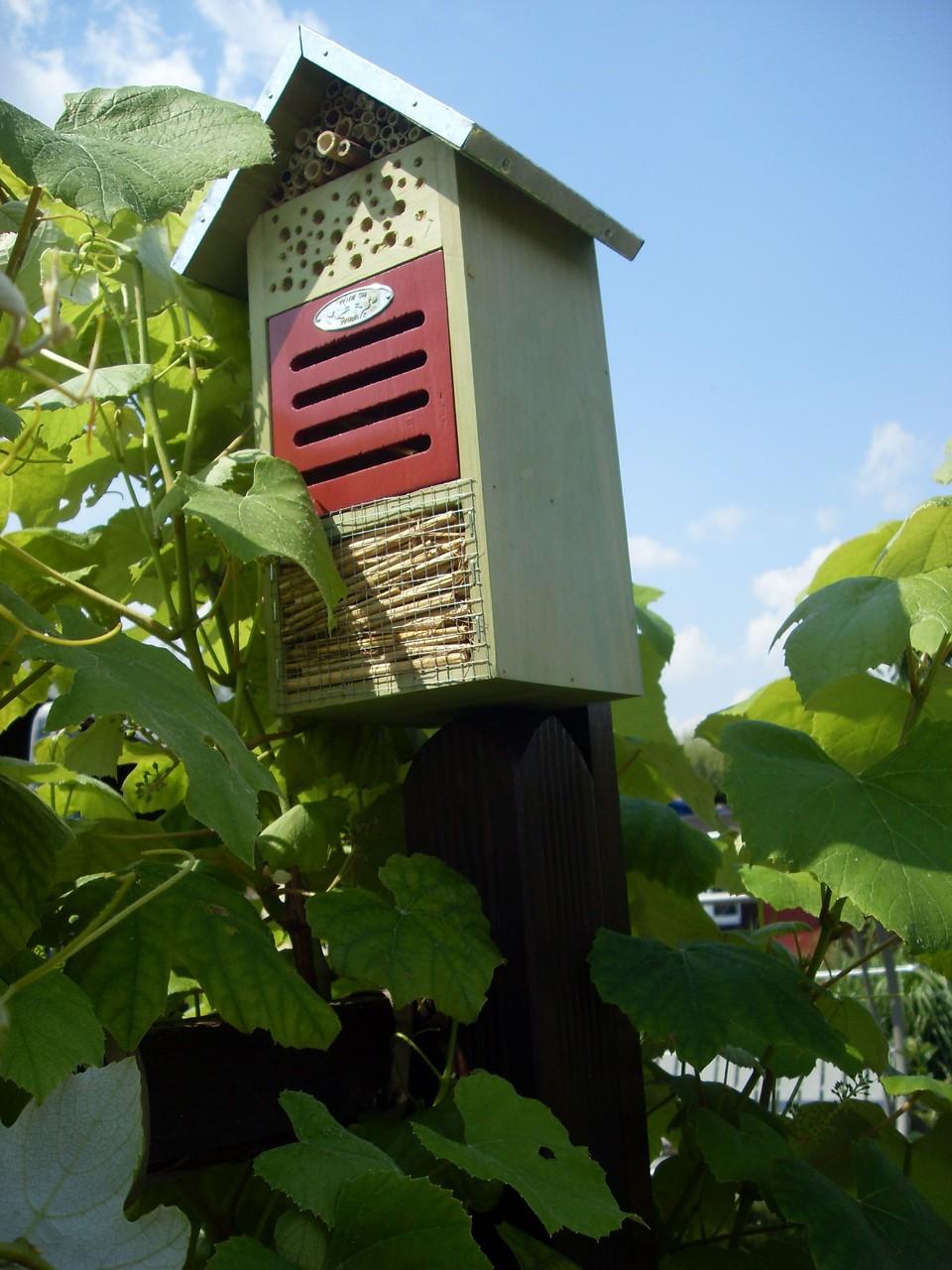 Insektenhotel 2011-6