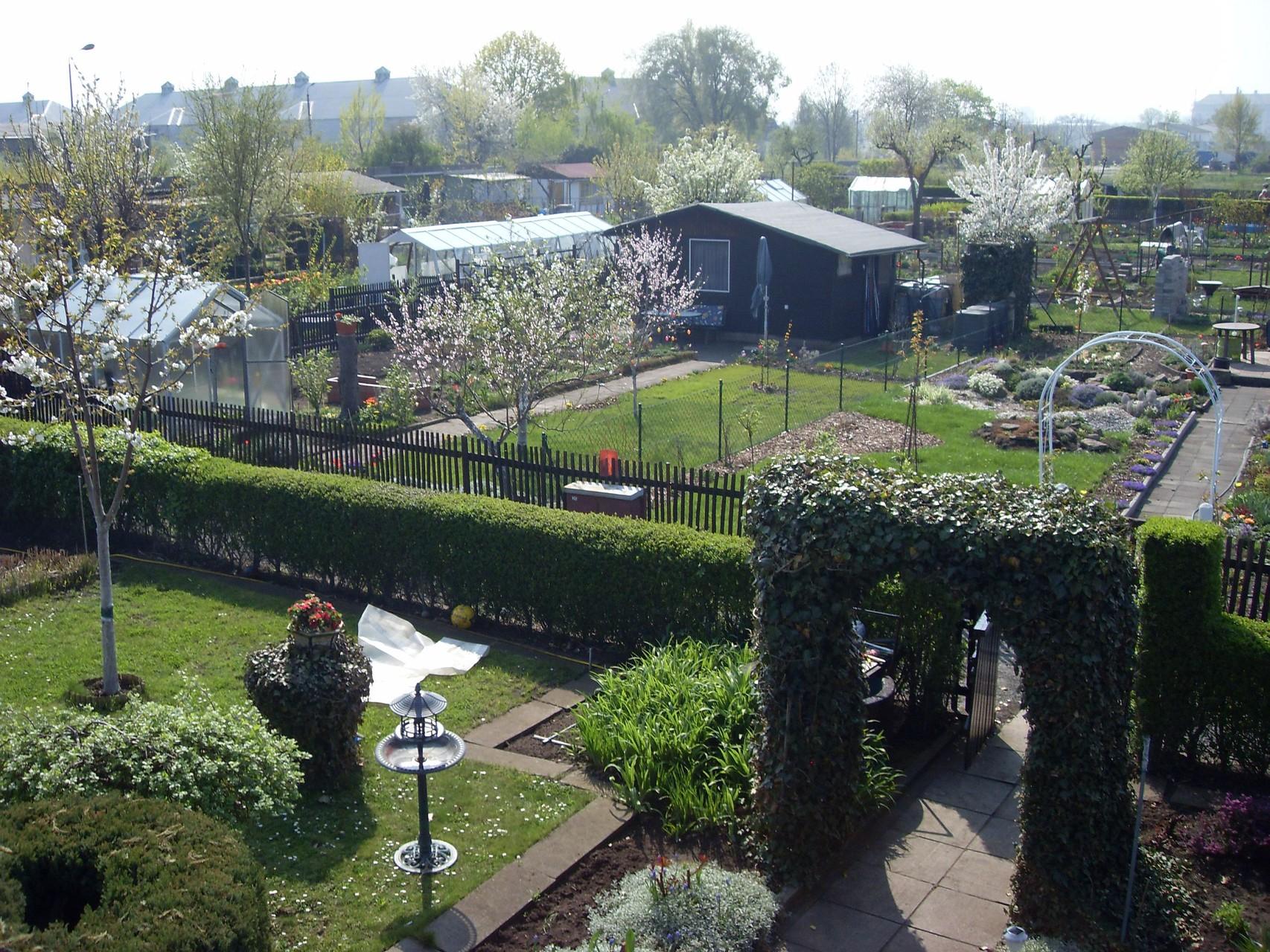 Garten 2009-3