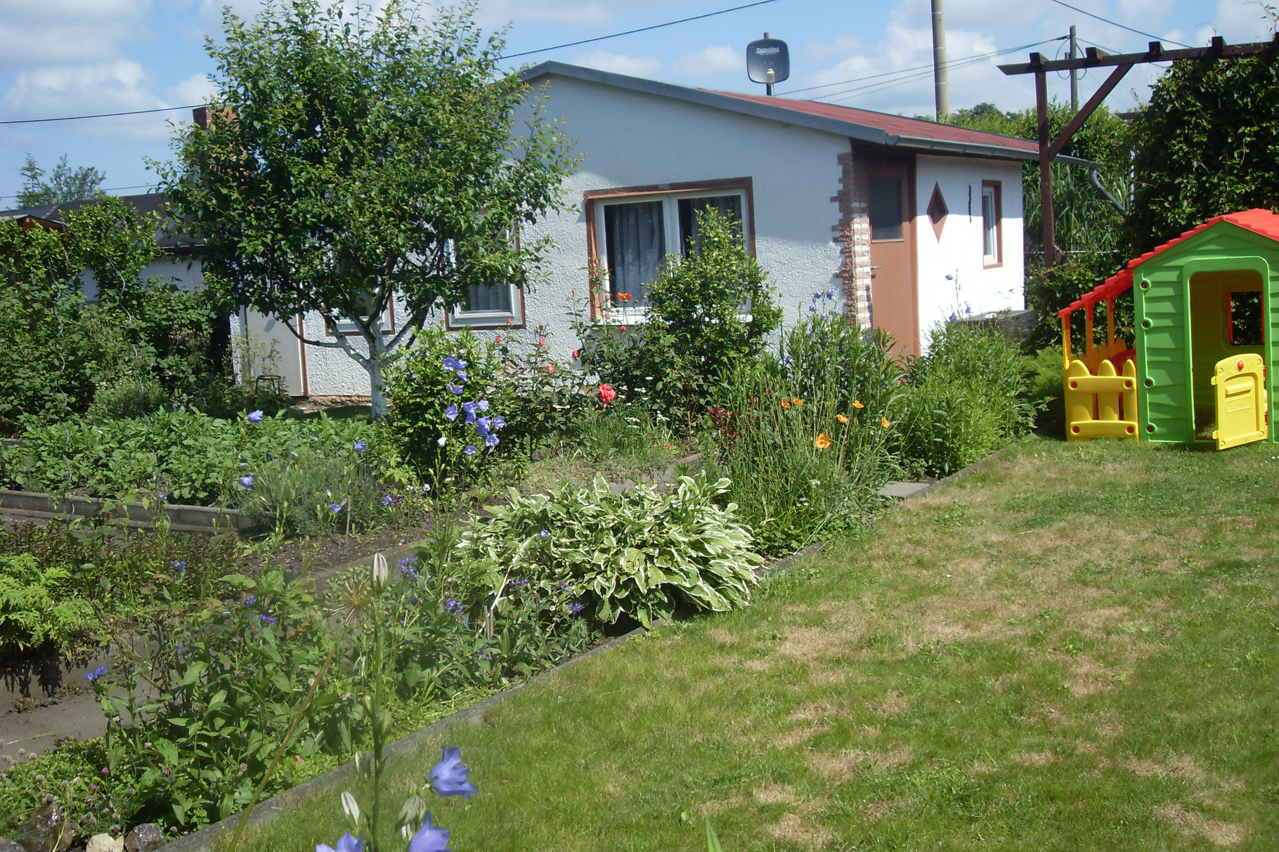 Garten 2014-5
