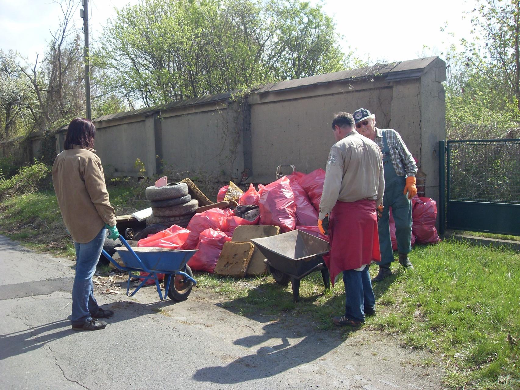Elbwiesenreinigung 2011-2