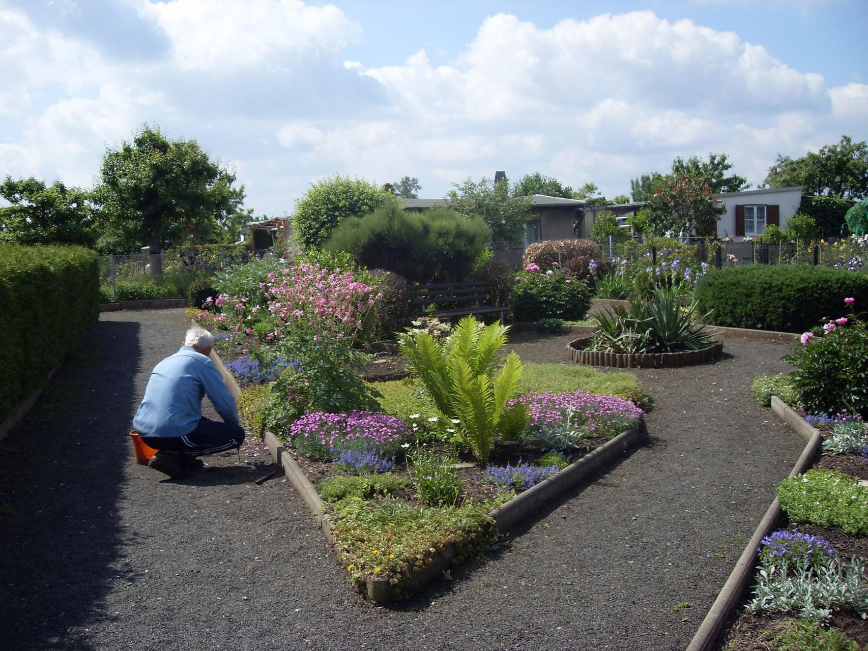 Garten 2009-2
