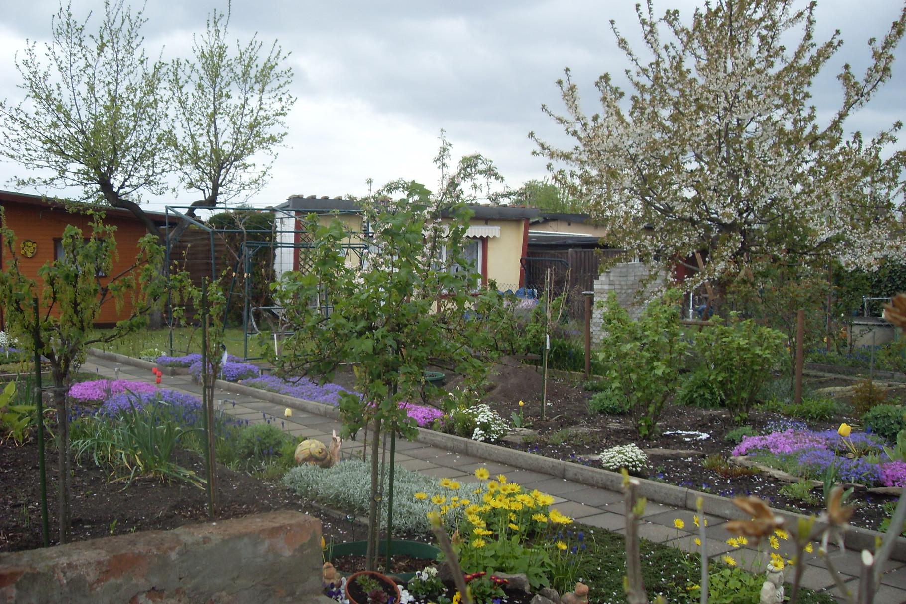 Garten 2014-6