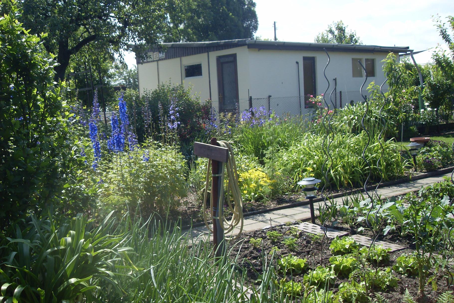 Garten 2014-13