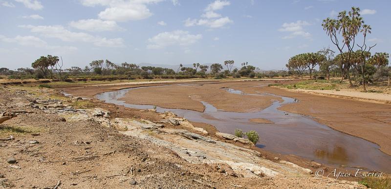 Samburu - Kenya février 2017