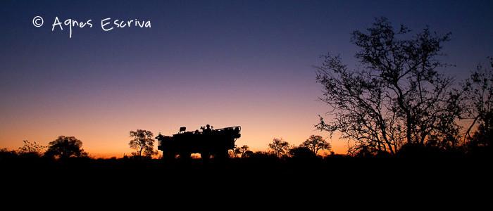 Véhicule au crépuscule - Timbavati  - Afrique du Sud, juin 2011