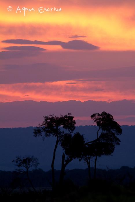 Coucher de soleil sur le marais de Musiara