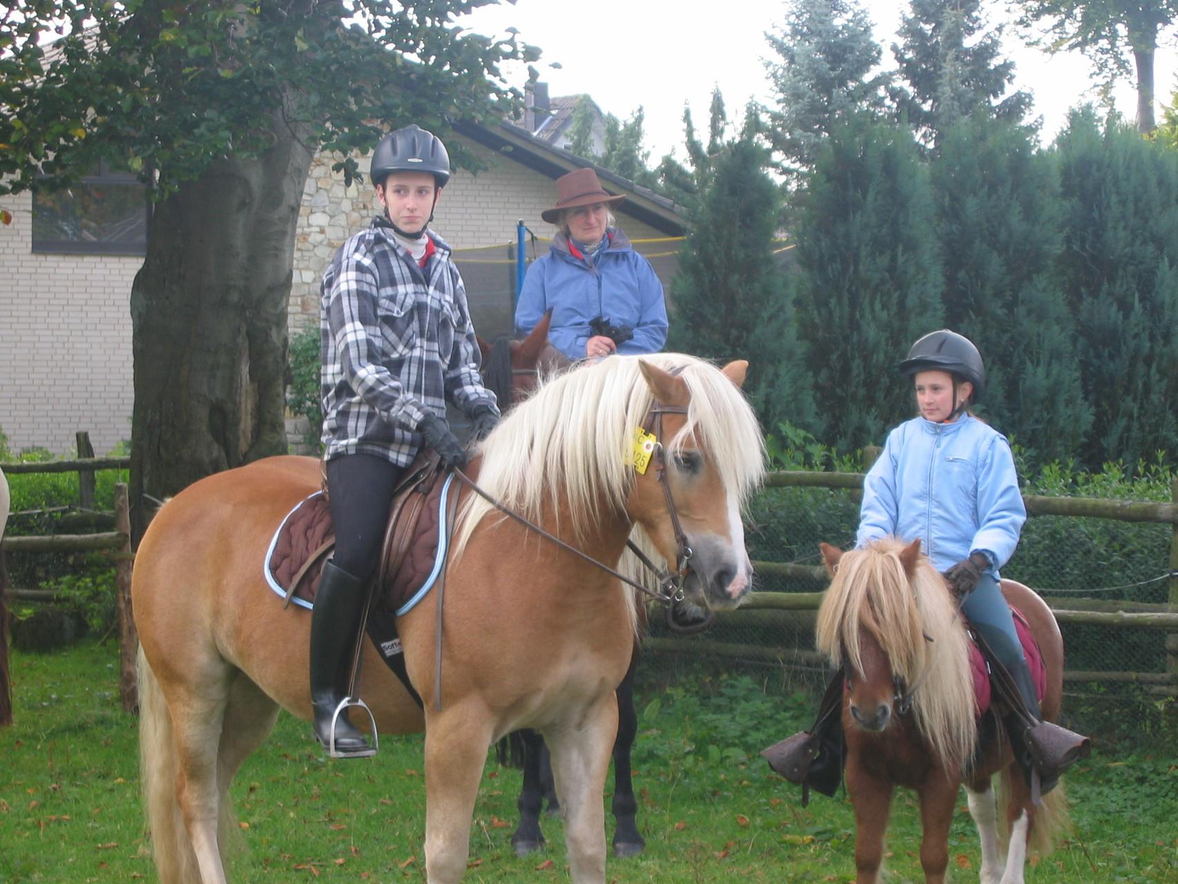 Fuchsjagd 2008