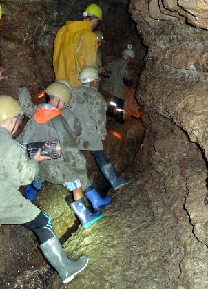 Höhlenführung in der Zinselhöhle