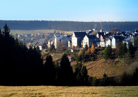Blick zum Rennsteig (Rheineinzugsgebiet)