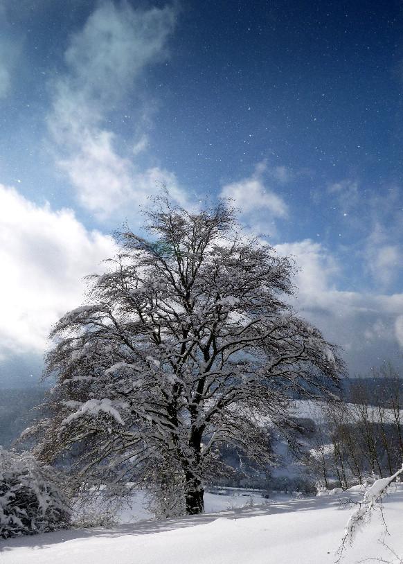 Winterblick von der Fränkischen Linie, Januar 2015