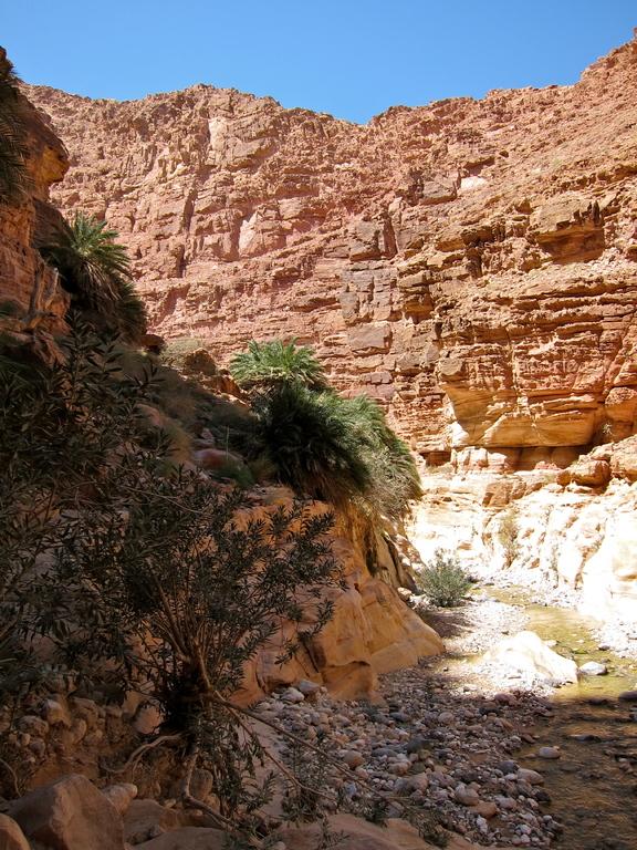 Ghwair Canyon Wanderung bei Feynan Eco Lodge, Jordanien