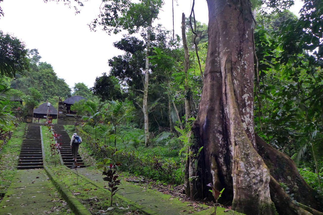 Tempelanlage Pura Luhur Batukaru zählt zu den heiligsten Stätten Balis