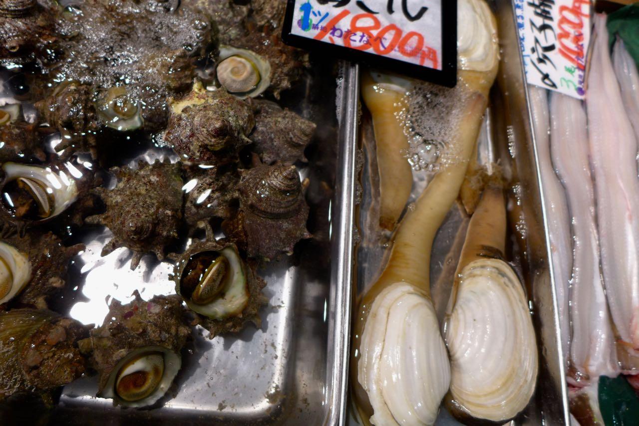 Meeresschecken und mehr, Tokio Tsukiji Outer Market