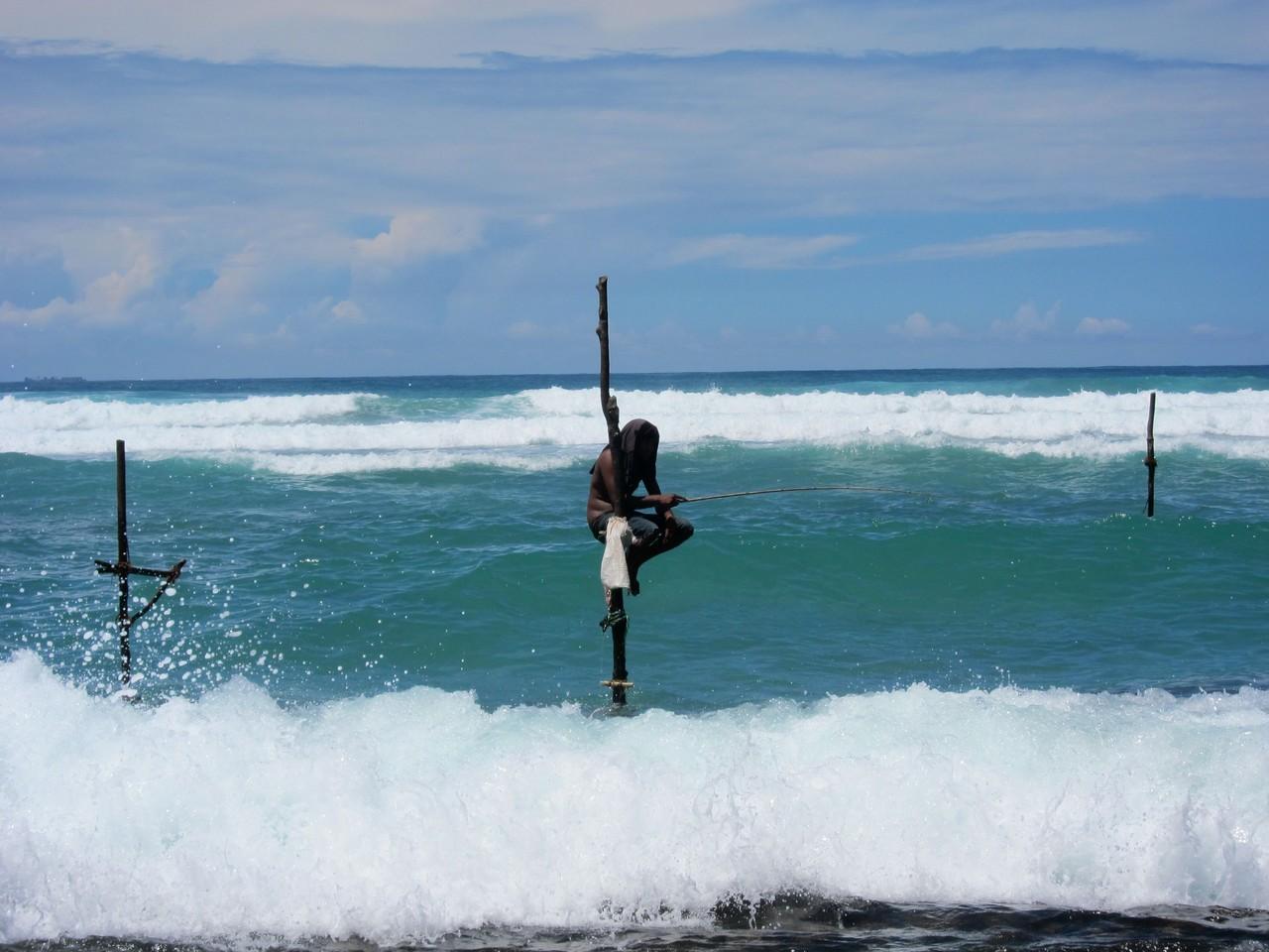 Einsamer Stelzenfischer, fischerman Kogalla Beach Sri Lanka