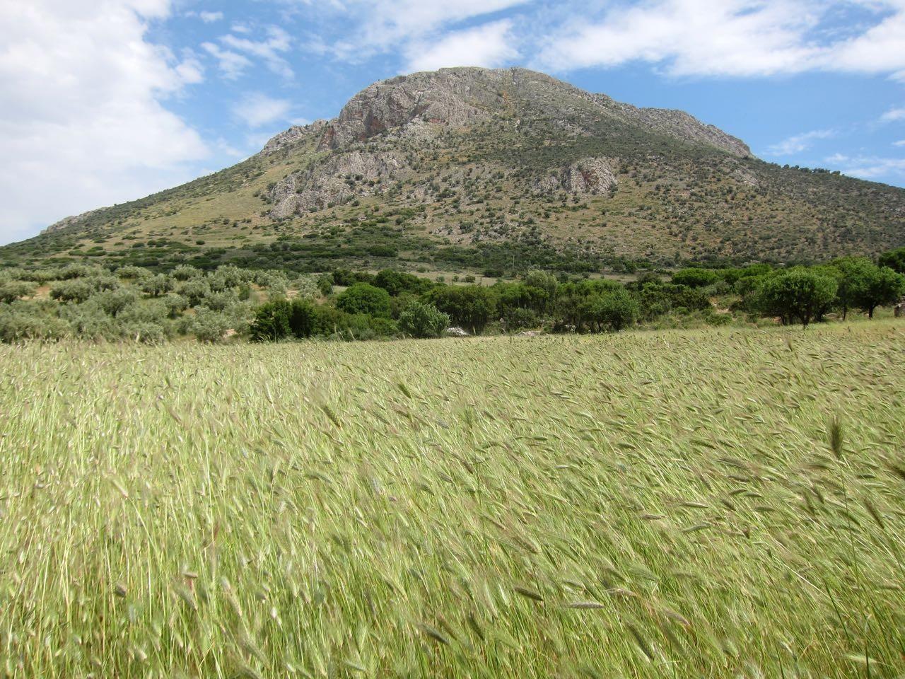 Wanderung um Mykene, dieser Berg ist das Ziel