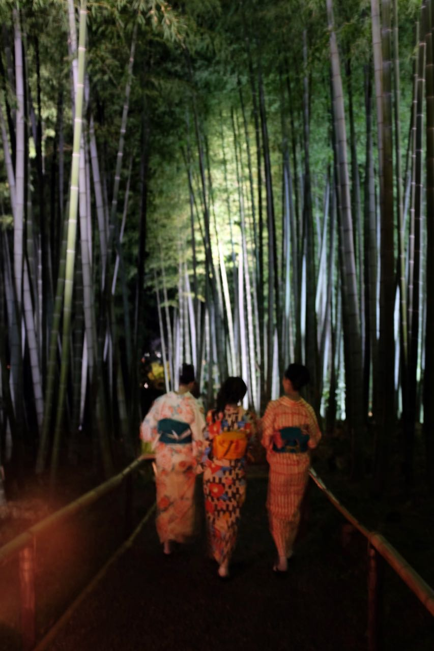 Kyotos schönste Tempel – Kodai-ji zum Night Illumination Event