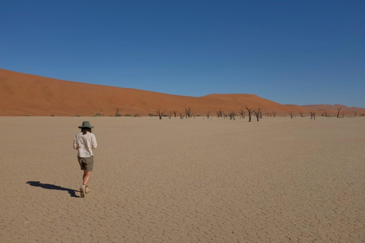 Dead Vlei Sossusvlei, Namibia