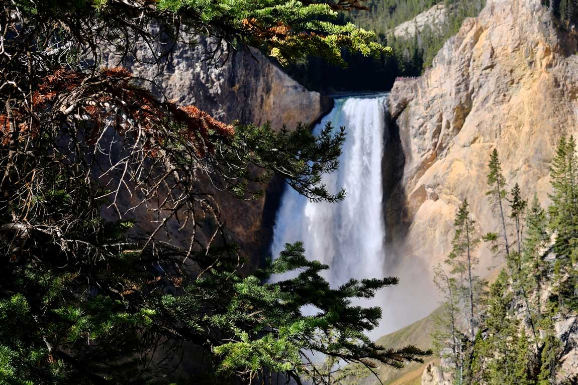 Red Rock Point Blick Yellowstone Lower Falls
