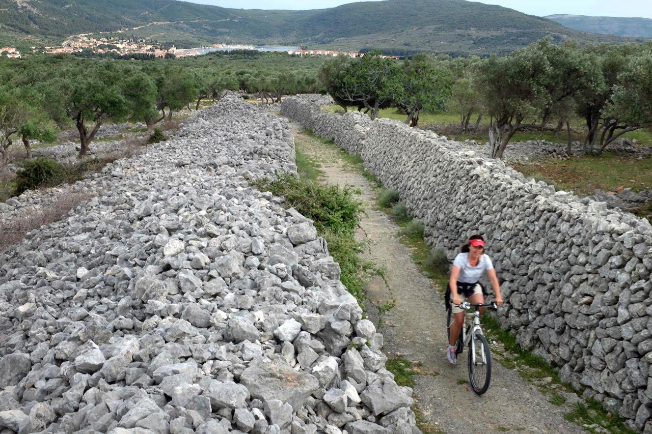 Mit dem Bike oder zu Fuß in die Olivenhaine von Cres