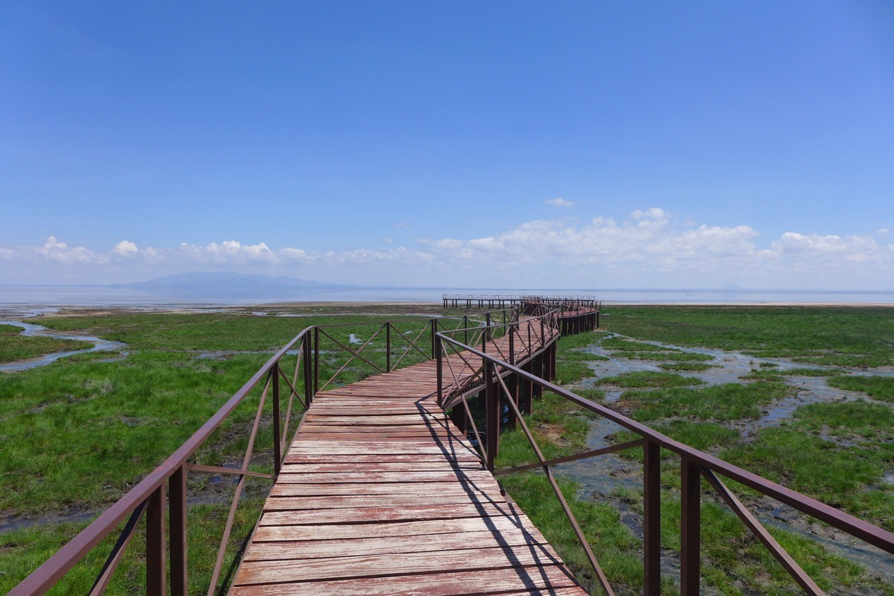 Der Boardwalk zum See Lake Manyara