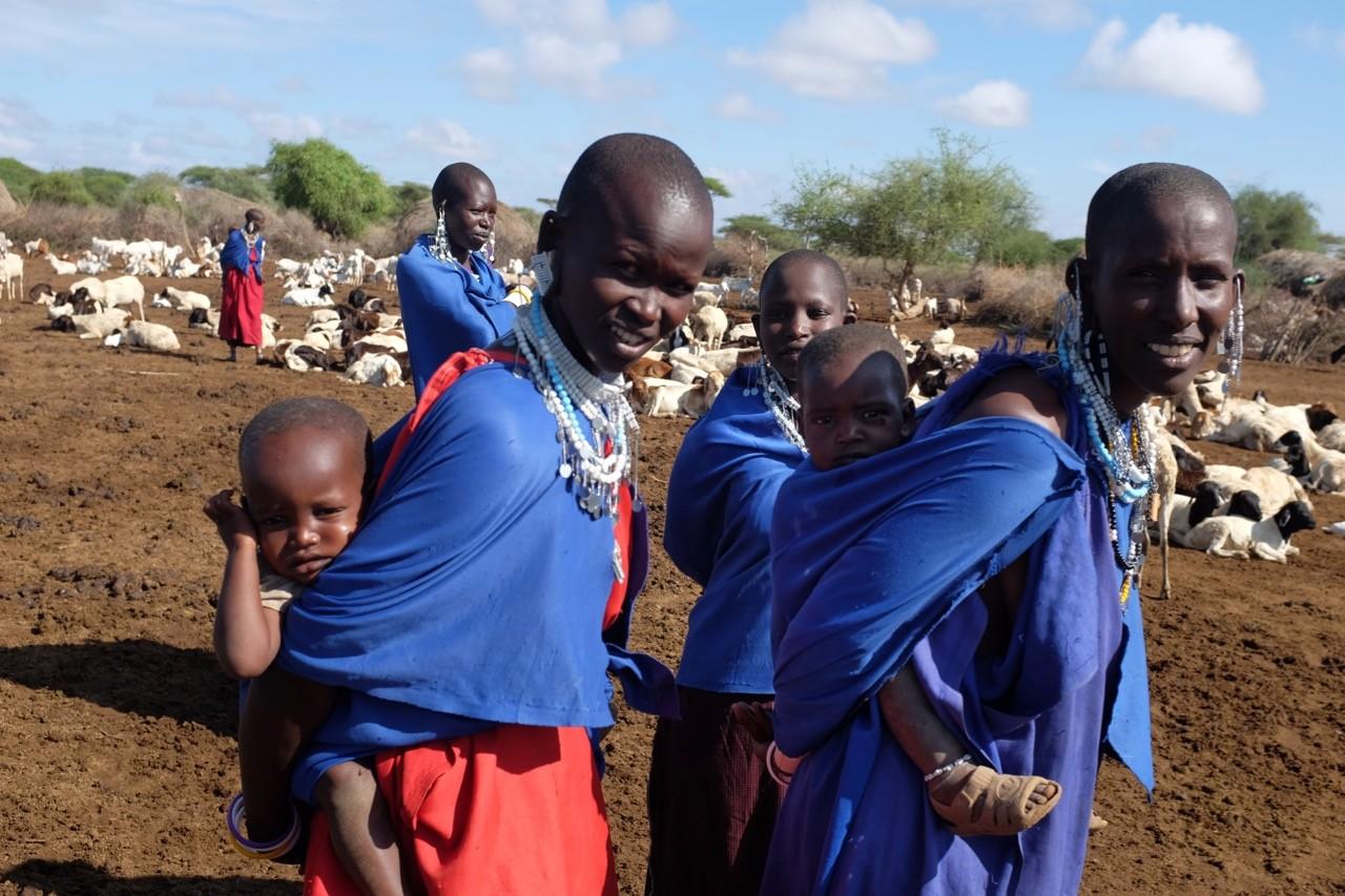 Tansania Massai Dorfbeusch