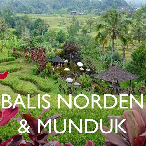 Reisebericht Bali Norden Reiseblog