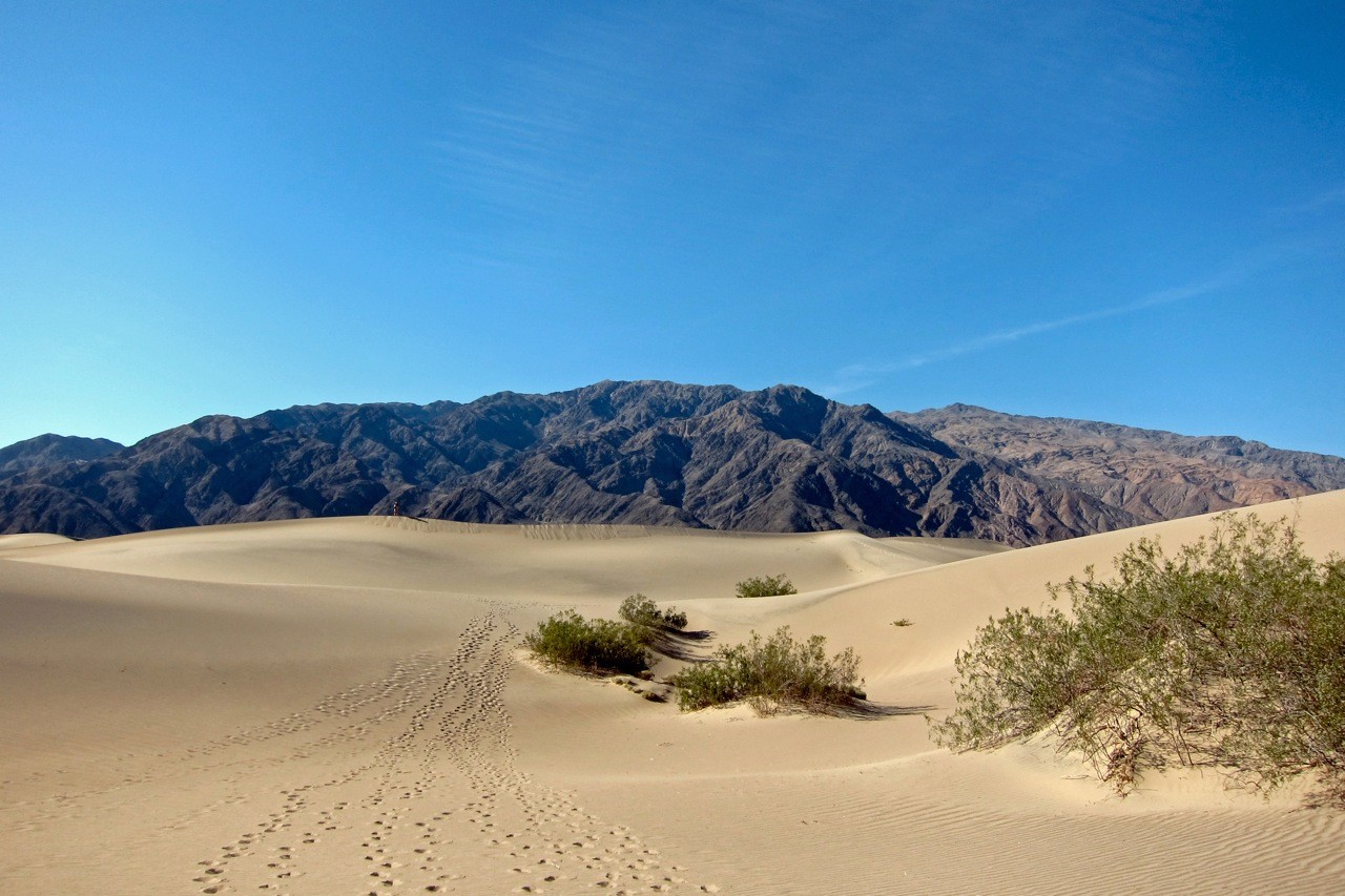 Walk on Mesquite Flat Sand Dunes, Death Valley