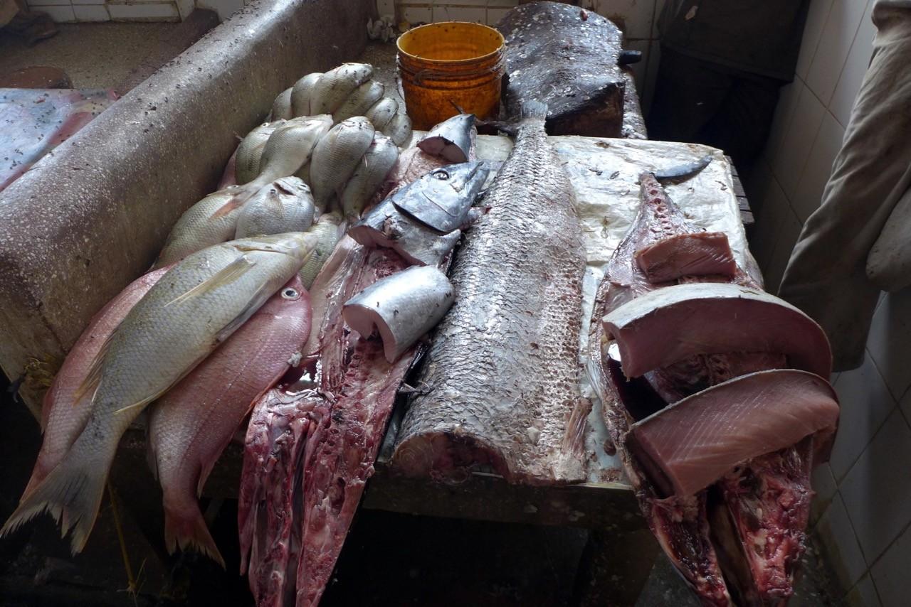 Fischmarkt im Darajani Market in Stone Town