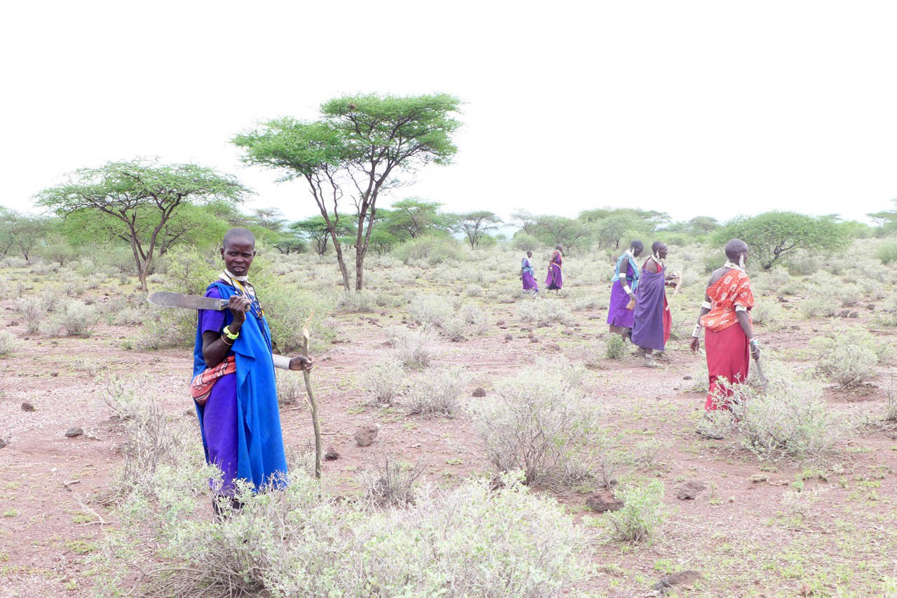 Massai Frauen in der Amboseli Synia Steppe