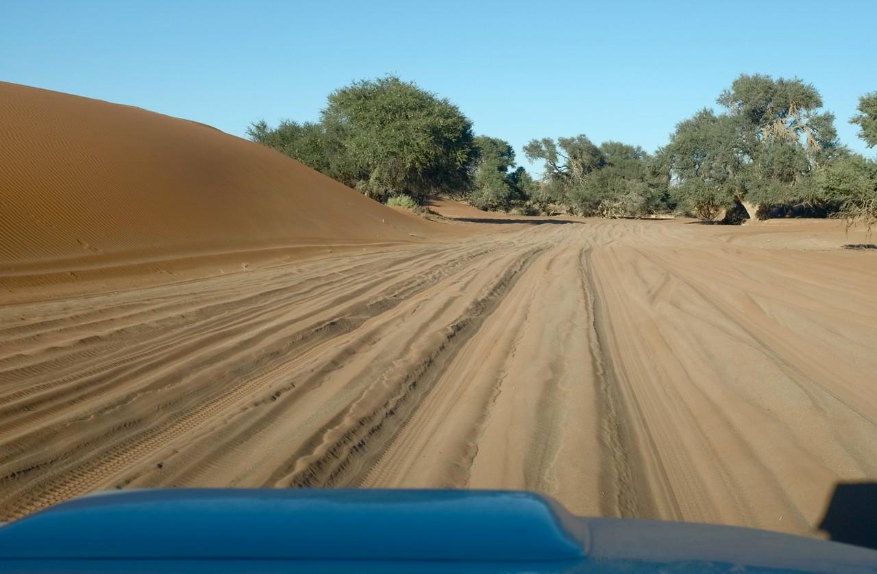 Sand Pad zum 4x4 Parking Sossusvlei, Namibia