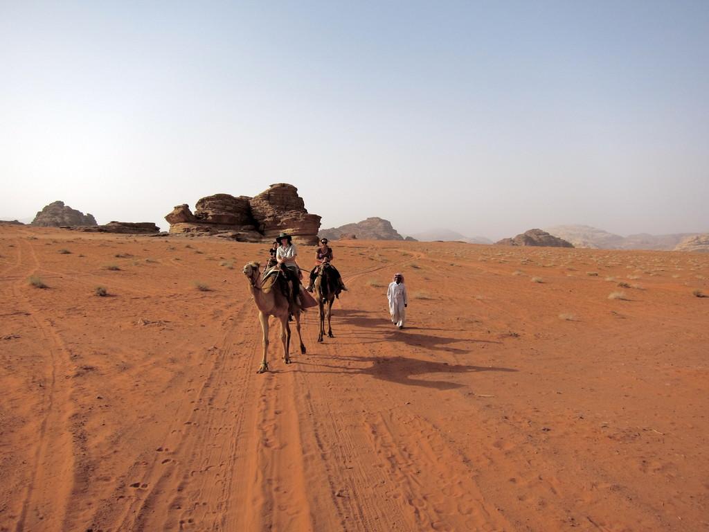 , Wadi Rum JordanienKamelritt zurück nach Rum Village