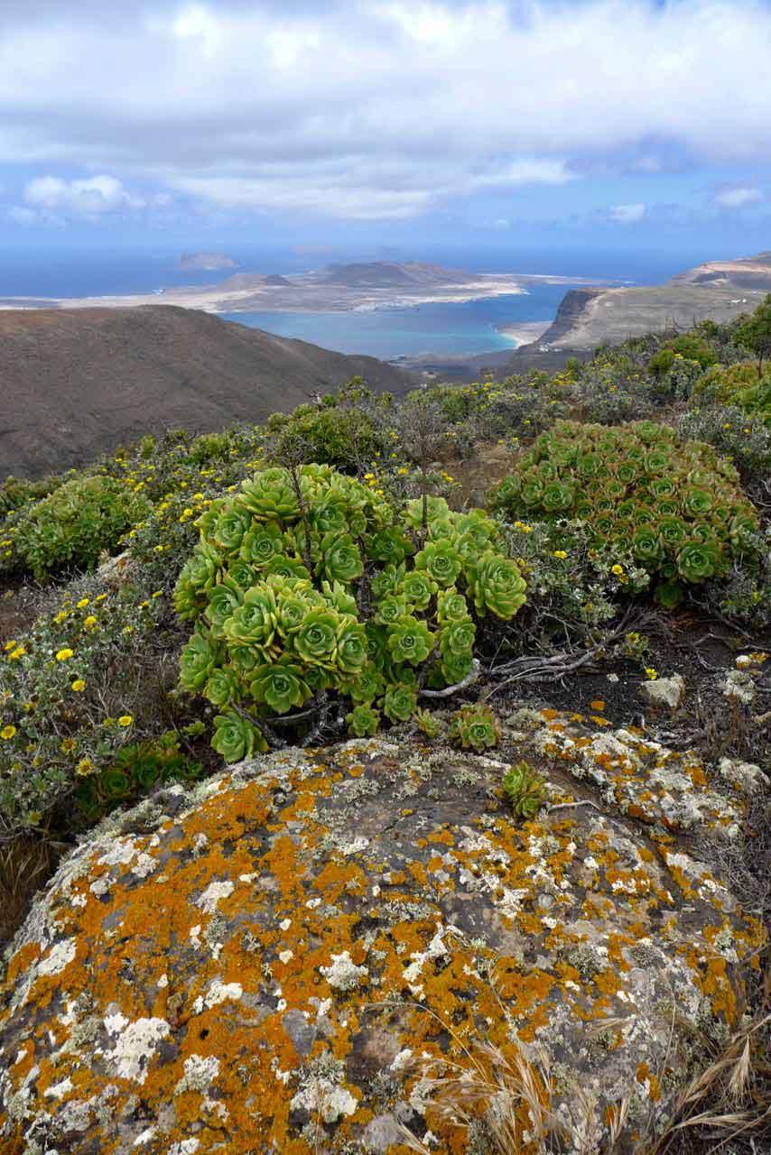 Los Helechos Vulkankrater Wanderung Lanzarote
