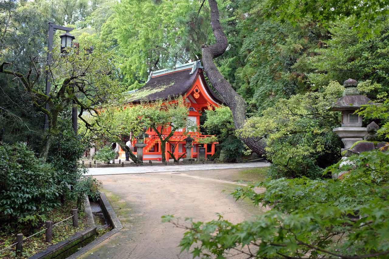 Kitano Tenmangu Tempel Kyoto / am 25.  Tenjin-san-Flohmarkt