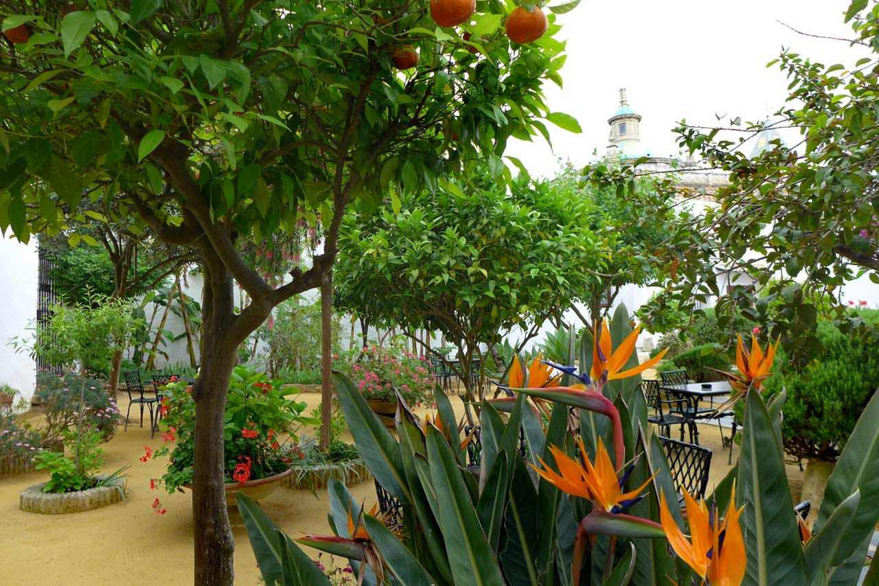 Gartencafé im schönsten Palast in Sanlucar