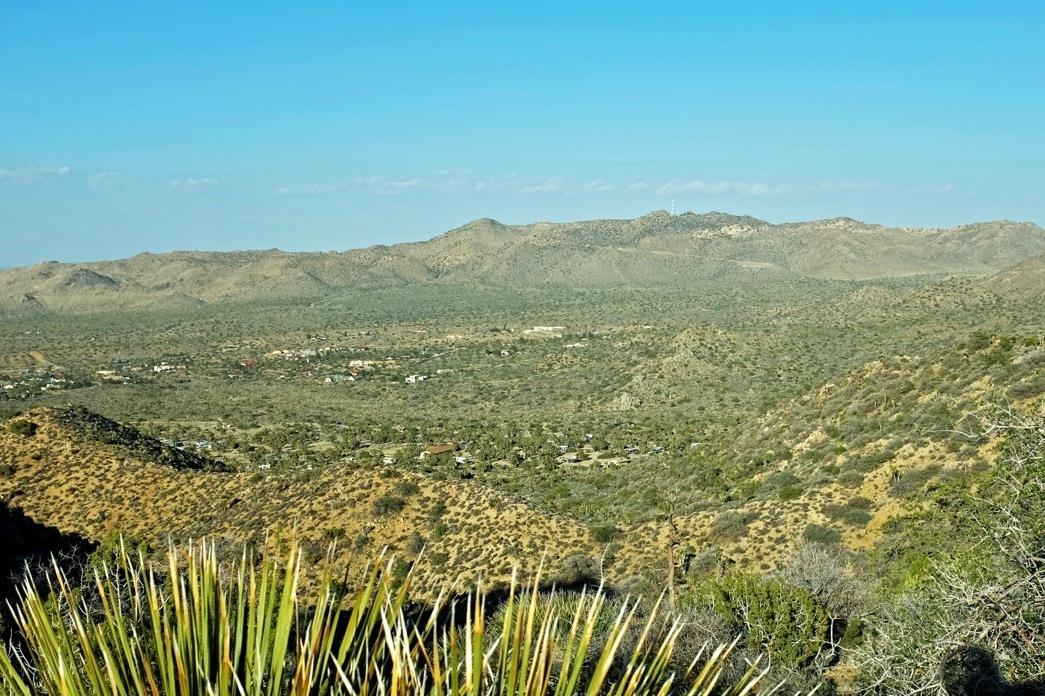 High-View Nature trail Joshua Tree NP