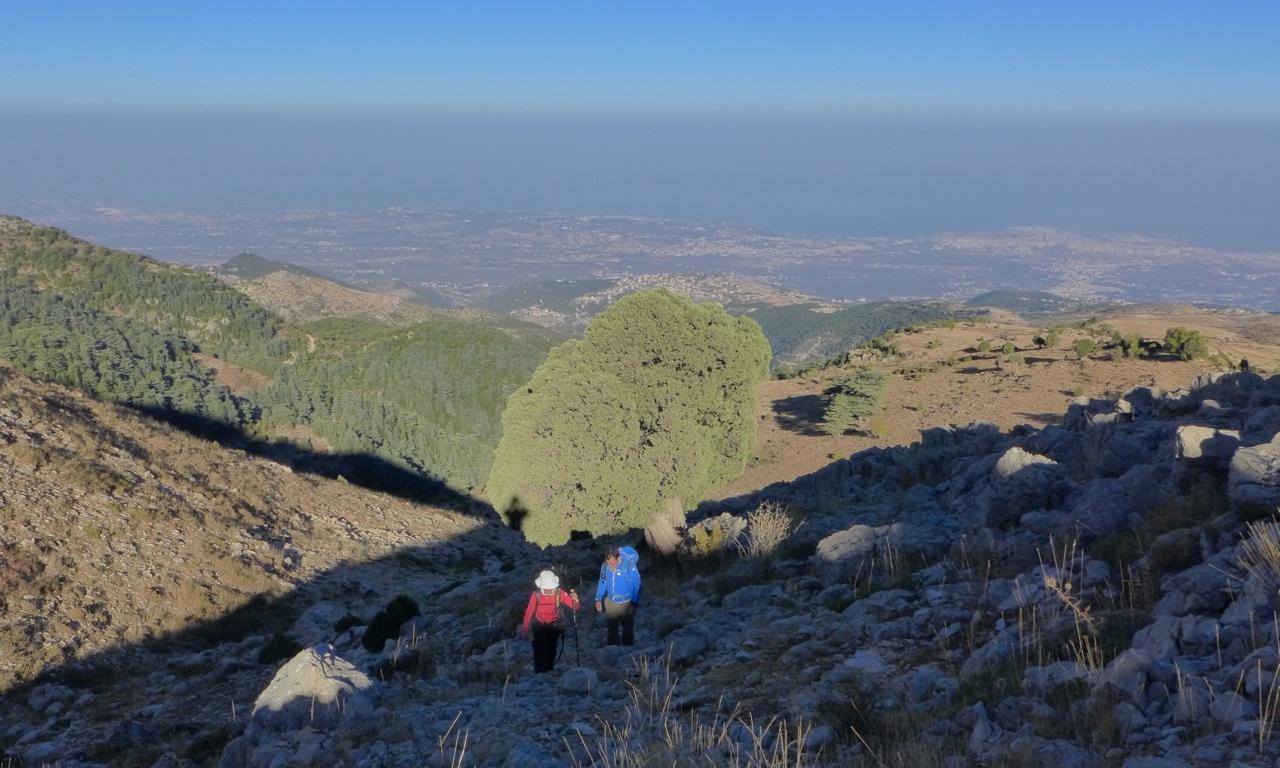 Wanderung auf den Qurnat as Sauda (Schwarze Horn) Libanon