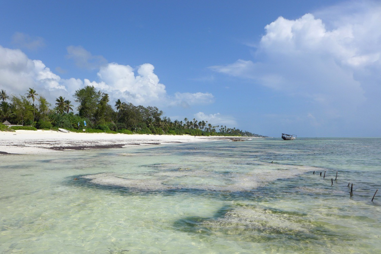 Bei Ebbe sind die Korallensteine sichtbar, die Hölzer halten die Schnüre für die Algenzucht