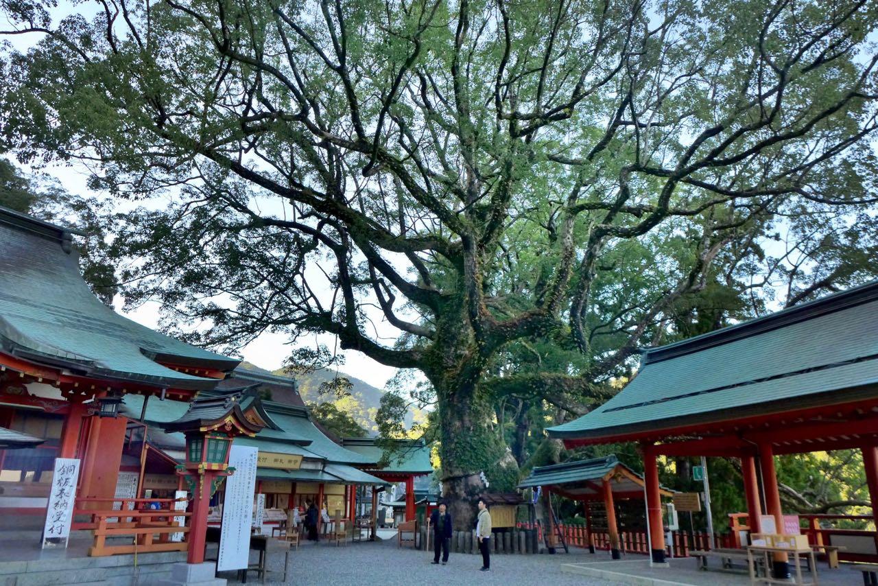 Der große Shinto Schrein Kumano Nachi Taisha