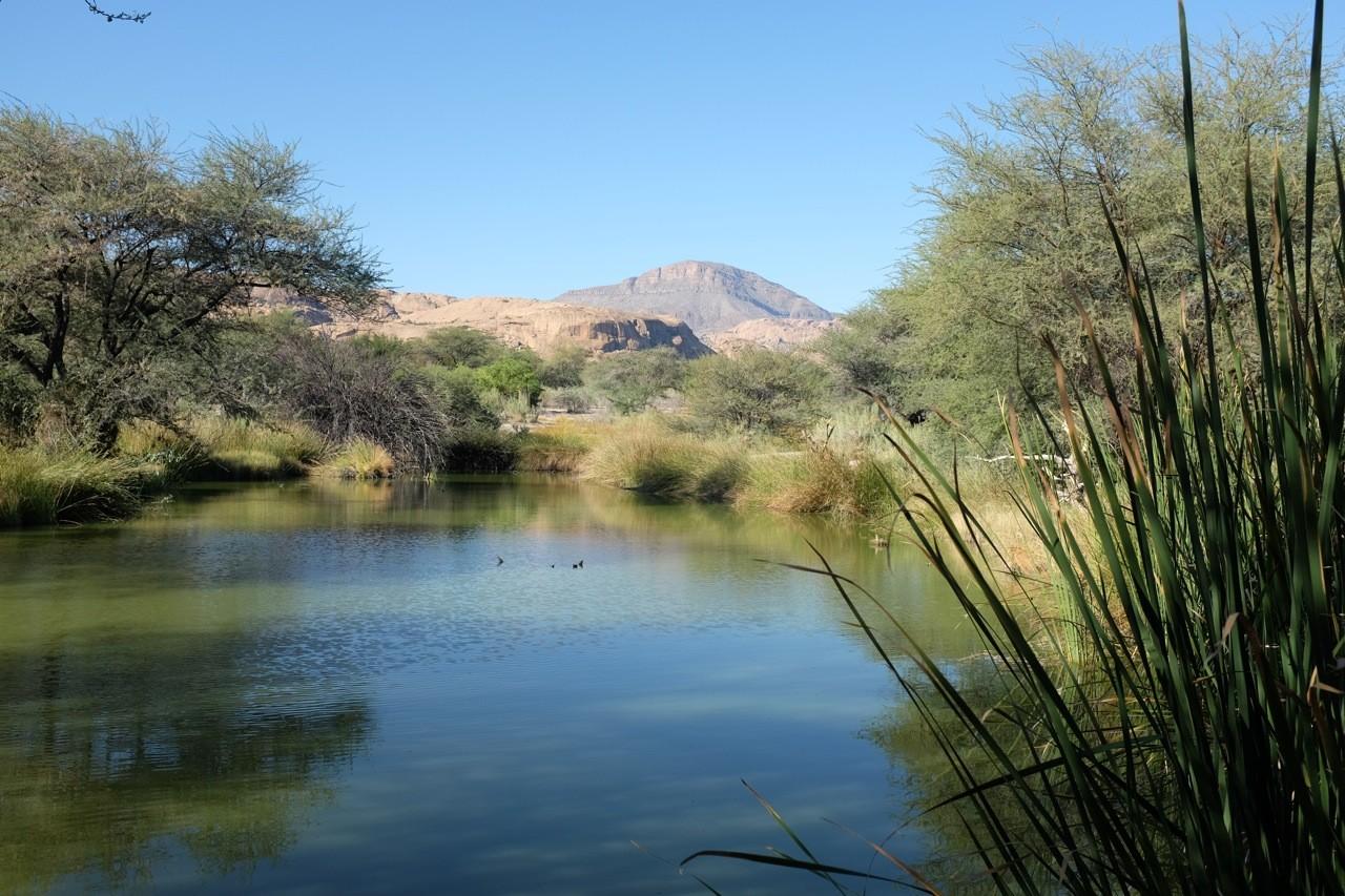 Teich mit Rohrdommelsitz, Ameib Ranch Namibia