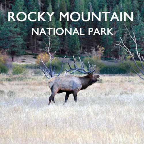 Rocky Mountain Nationalpark USA Reiseblog