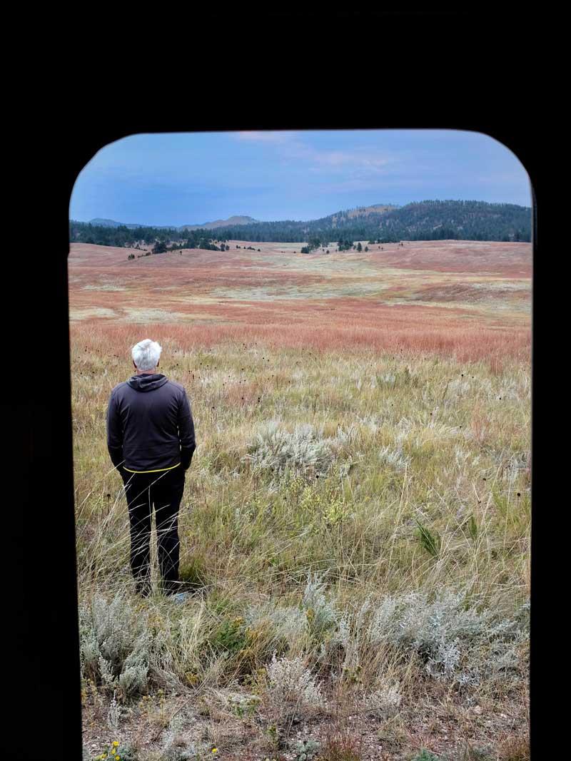 Aus dem Camper in die Natur, Custer State Park