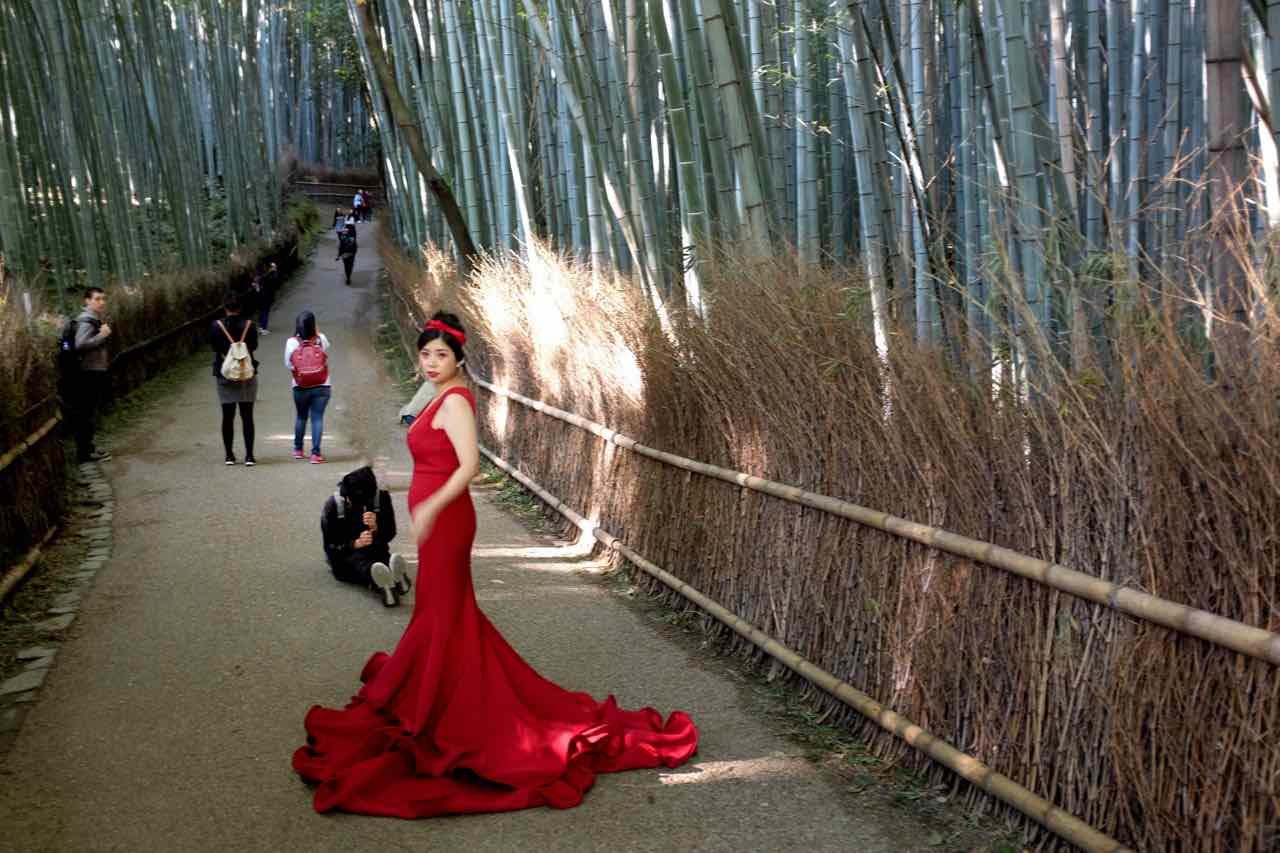 Foto-Shooting im Bambushain Sagano Arashiyama bei Kyoto