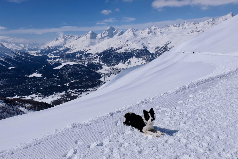 Winterwandern am Muottas Muragl, Oberengadin