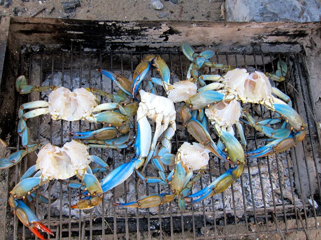 Frische Krebse aus dem Dalyan Delta, Lykischen Küste