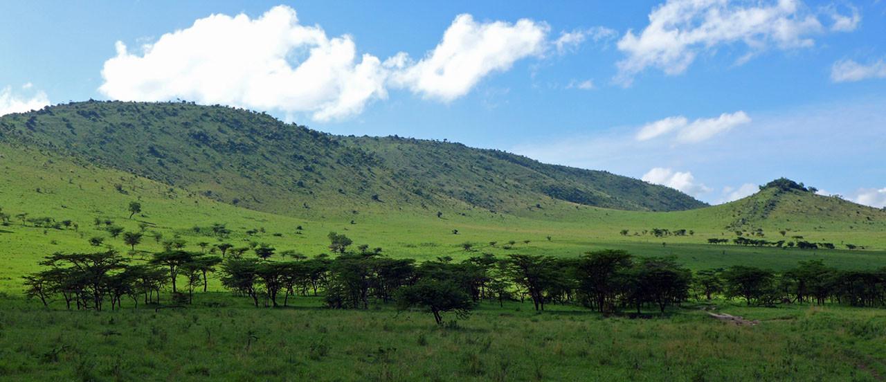 Nord Serengeti zur kleinen Regenzeit