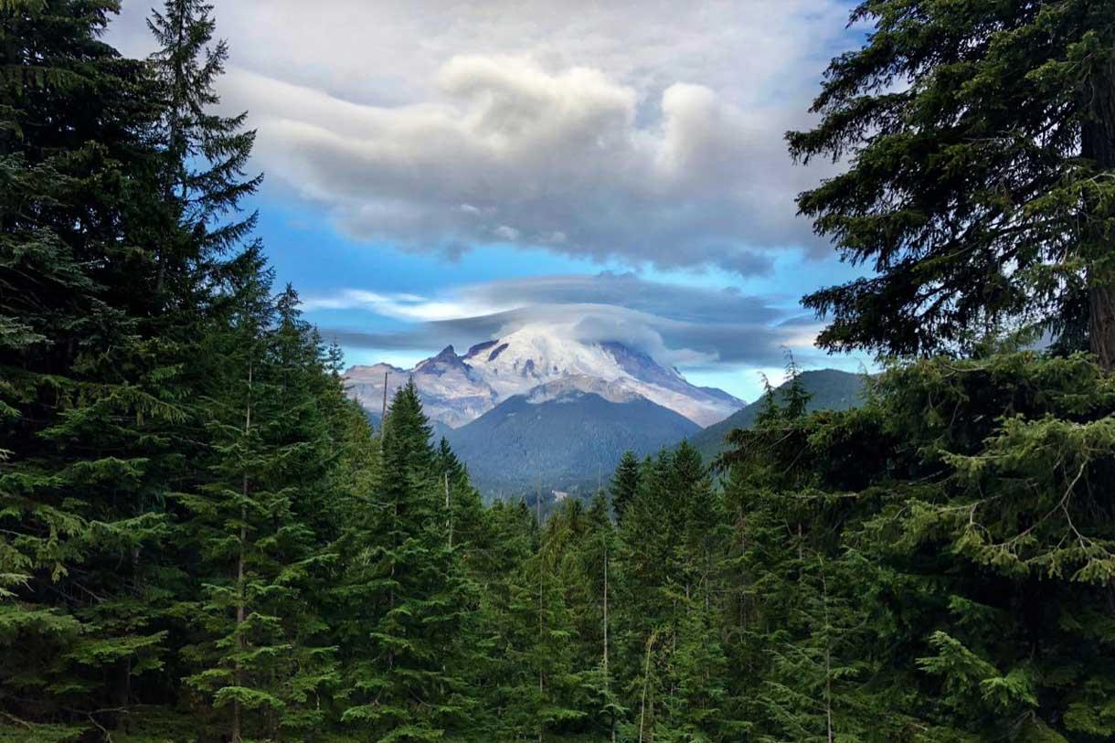 Unglaublich der Mt Rainier Blick auf dem Weg zum Sunrise Visitor Center