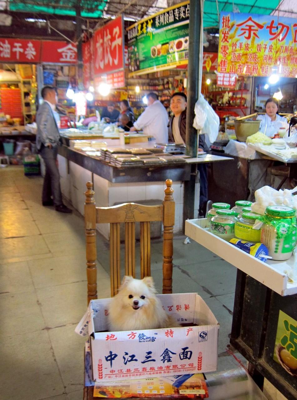 Frischmarkt Chengdu