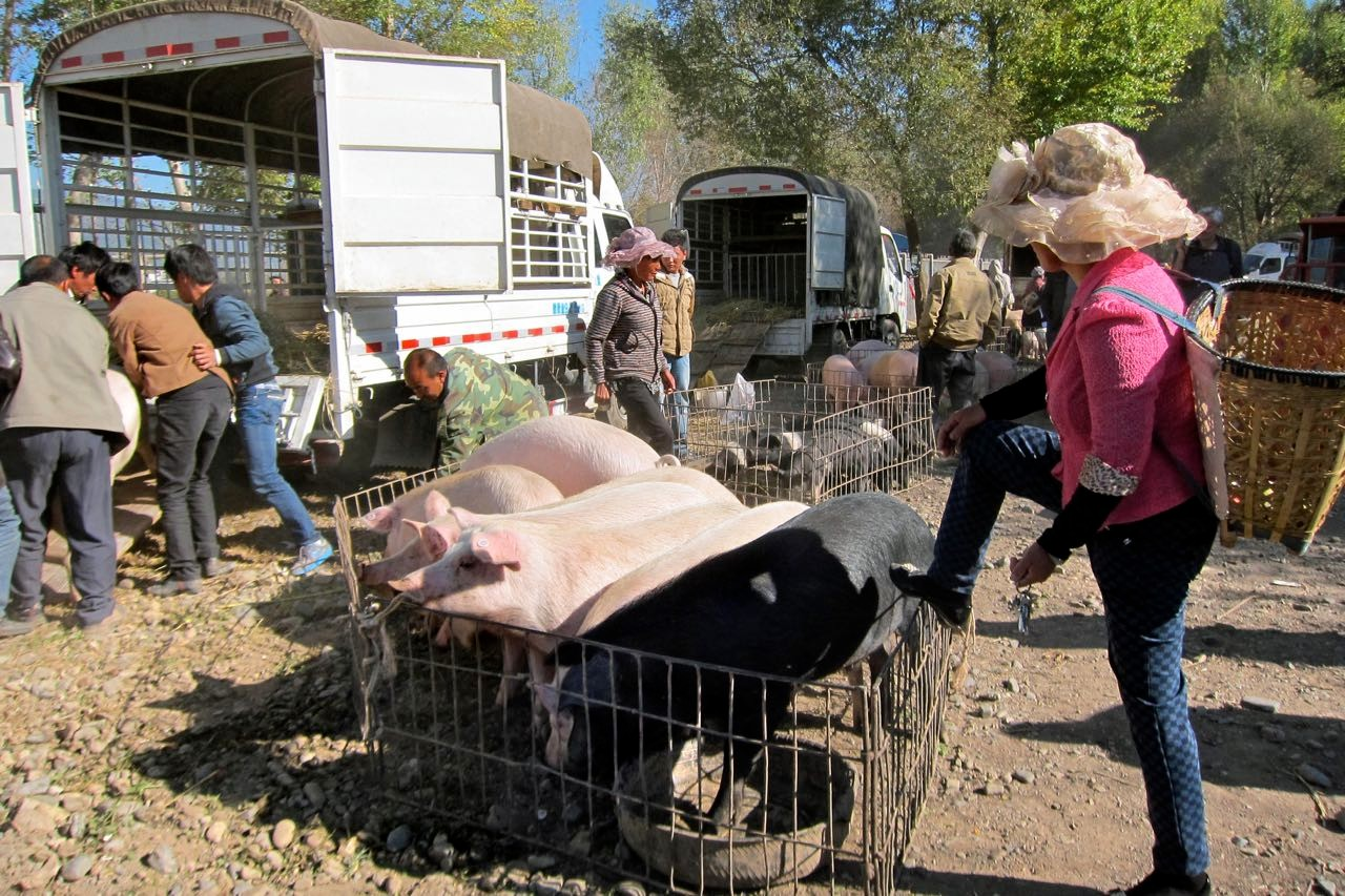 Am Shaxi Freitag-Markt geht es auch tierisch zu