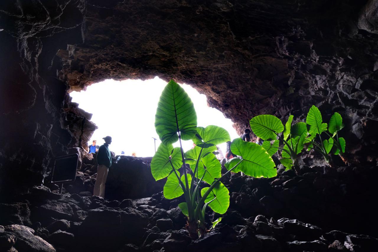 Cueva de los Verdes Lanzarote Vulkanhöhle Tour