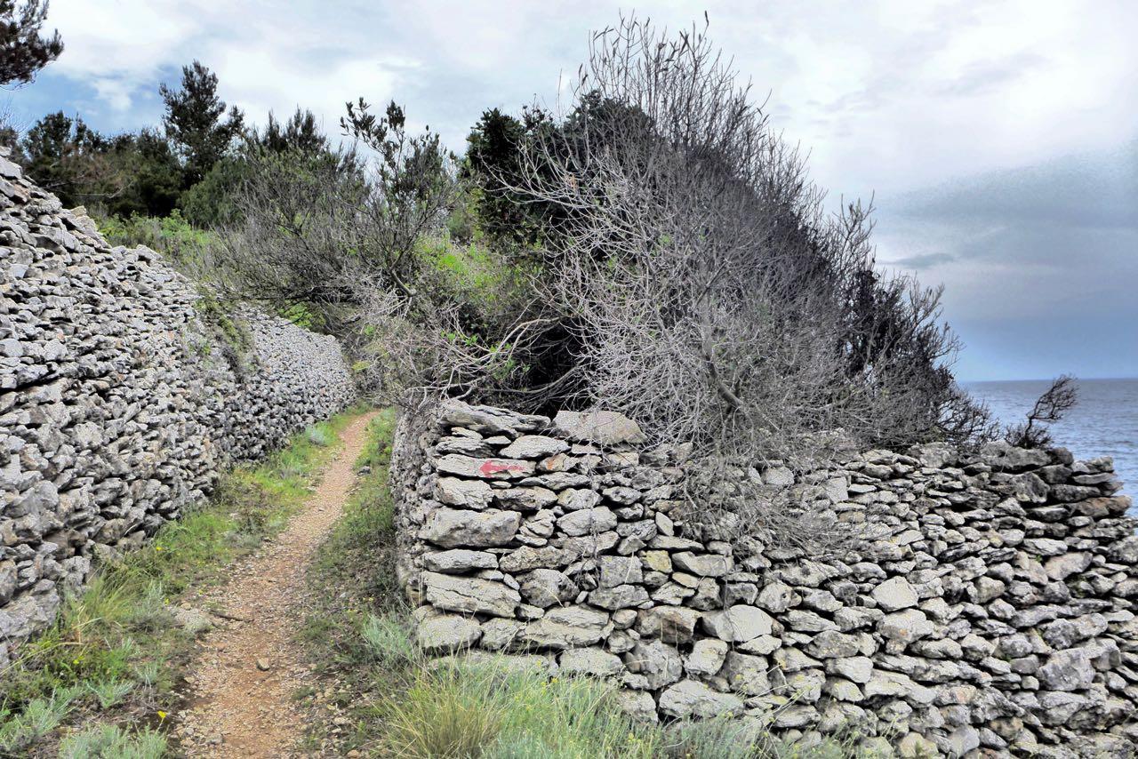 Wandern entlang der alten Trockenmauner auf Losinj